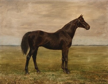 Danish Oil Painting of Black Horse in Field 35649